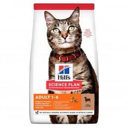 Hills SP Feline Adult Lamb