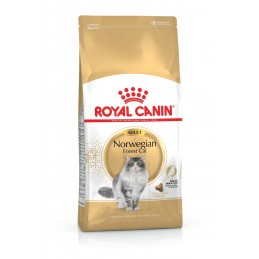 ROYAL CANIN FBN Norwegian Cat