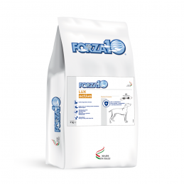 Forza10 DOG LUX Active