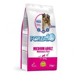 FORZA10 Medium Adult Dog Fish