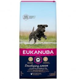 Eukanuba Junior Large Breed...