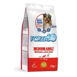 FORZA10 Medium Adult Dog...