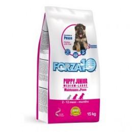 FORZA10 Puppy medium/large...