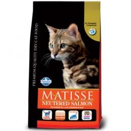 MATISSE NEUTERED CAT