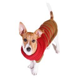 Adīts džemperis suņiem