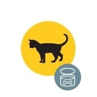 Konservi kaķiem